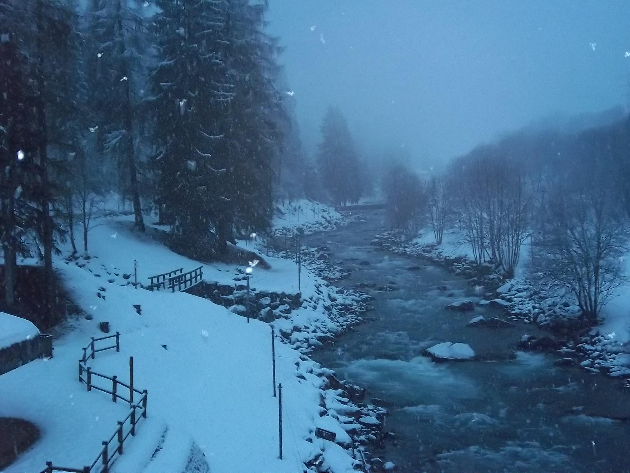 Foto Trentino 2011 011